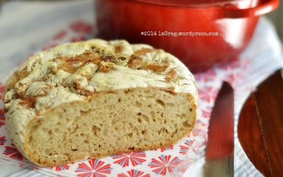 no knead bread con lievito madre 3