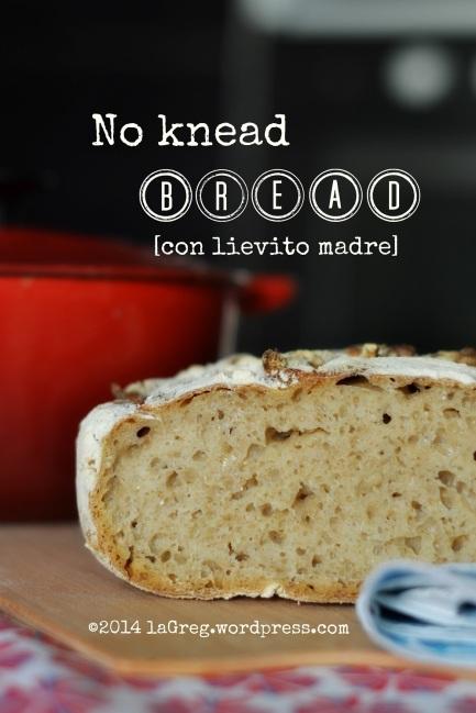 no knead bread con lievito madre
