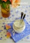 yogurt greco, mango e mandorle 5